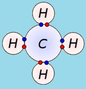 funcion de los hidrocarburos