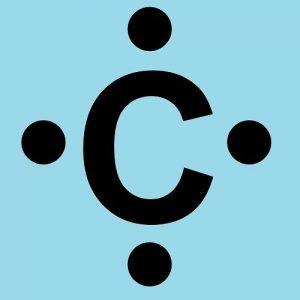 funcion del carbono en los seres vivos